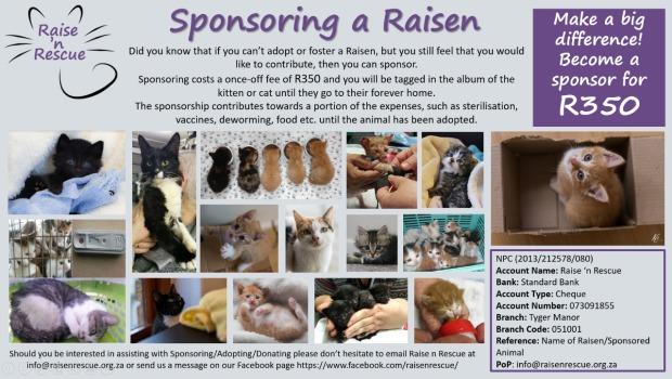 sponsoring-a-raisen